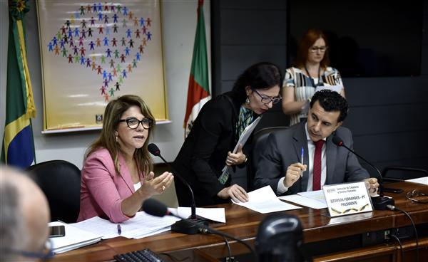 Miriam Marroni apresentou relatório final da Subcomissão do Tratamento Penal no Sistema Penitenciári