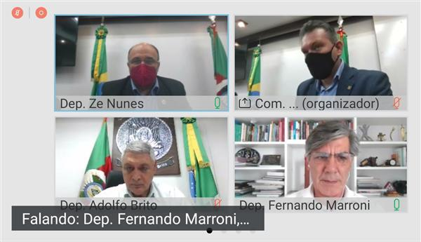 Comissão de Economia, Desenvolvimento Sustentável e do Turismo, reunião virtual