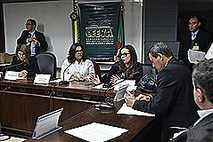 Relatora Juliana Brizola apresentou resultados dos trabalhos da Comissão